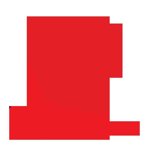 MTS dengi_copy