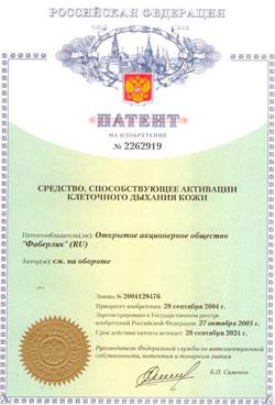Patent 2262919-s