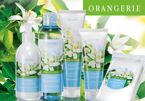 Orangerie-osmantus-new-sm