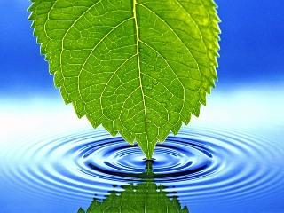 eka water